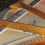 Trasporto e traslochi di pianoforti e strumenti musicali